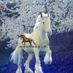 Häst & Övervikt – En dålig spiral